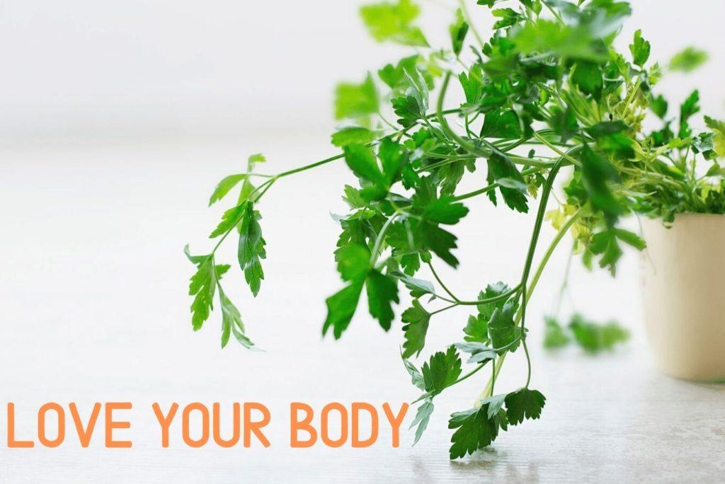 fodmap diet, low fodmap, herbs